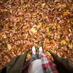 autumn-photo